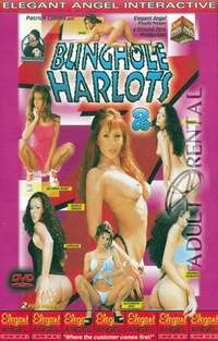 Bunghole Harlots 2 Cover