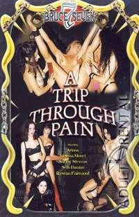 A Trip Through Pain Cover