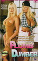 Plumb And Dumber Cover