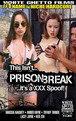 This Isn't Prison Break It's A XXX Spoof Cover