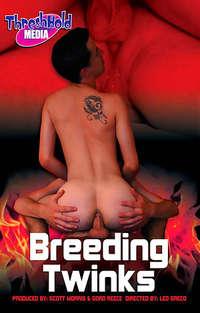 Breeding Twinks Cover