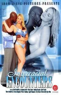 Interracial Encounters Cover