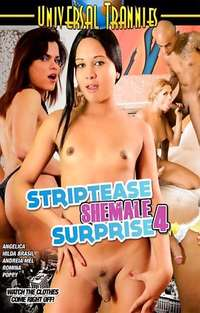 Striptease Shemale Surprise #4 Cover