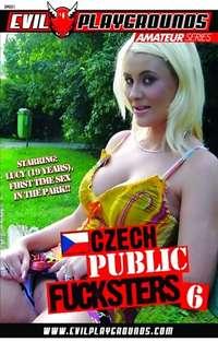 Czech Public Fucksters #6 Cover