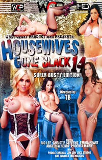 Housewives Gone Black #14  Cover