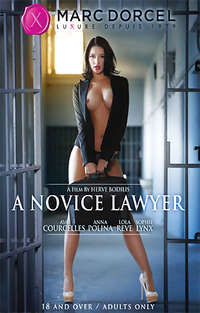 A Novice Lawyer Cover