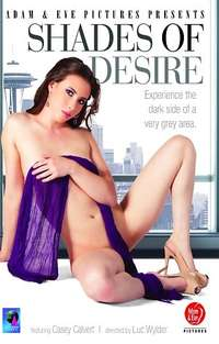 Shades Of Desire Cover