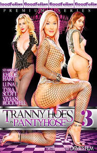 Tranny Hoes In Pantyhose #3 Cover