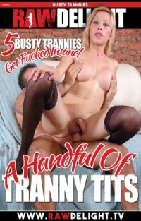 A Handful of Tranny Tits | Adult Rental